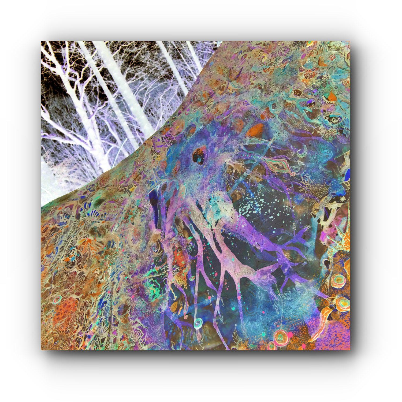 photography-loc-envel-49-artist-duo-ingress-vortices.jpg