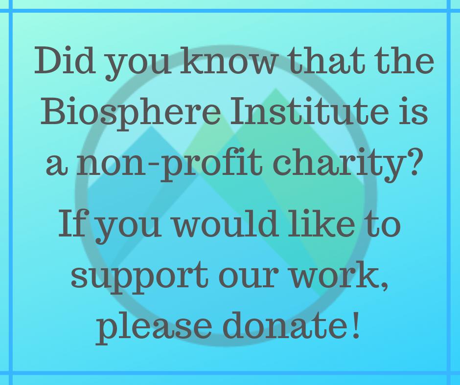 BIBV Donate.png