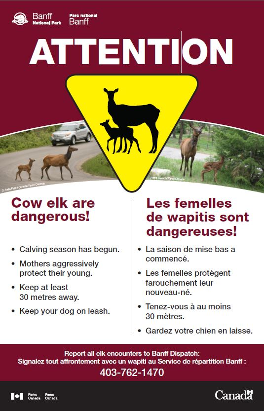 Warning Elk Calving Season.JPG