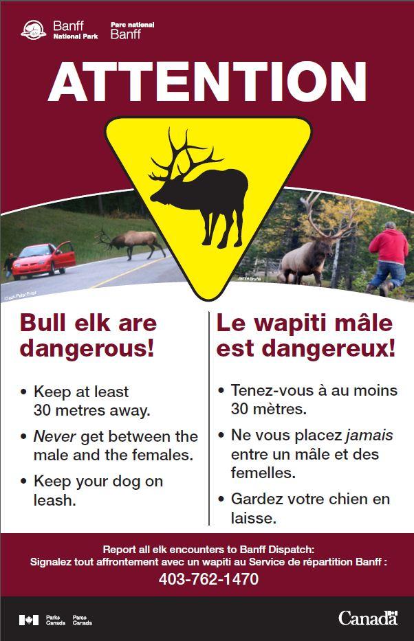 Elk Rut Warning.jpg