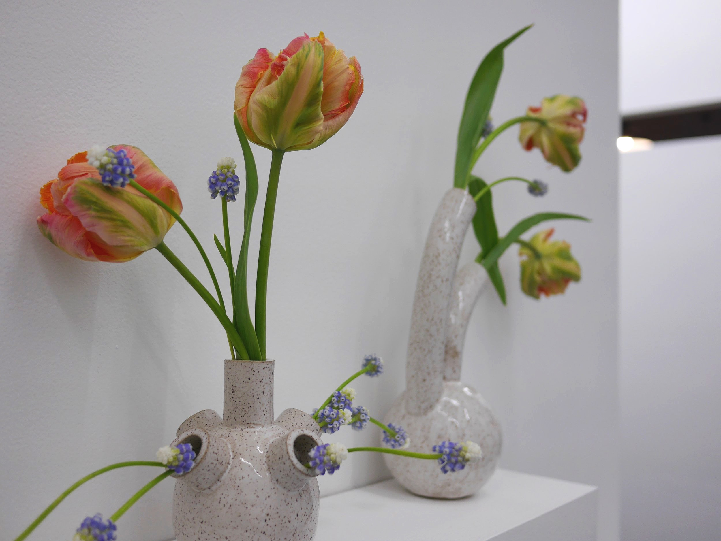 Flowers by Hilary Horvath  Vessel by Erica Prince