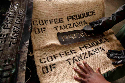 Lavazza-¡Tierra-Tanzania_22lowres5.jpg