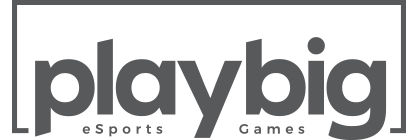 playbig_logo_420X140px_grey.png