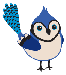 bluejay.png