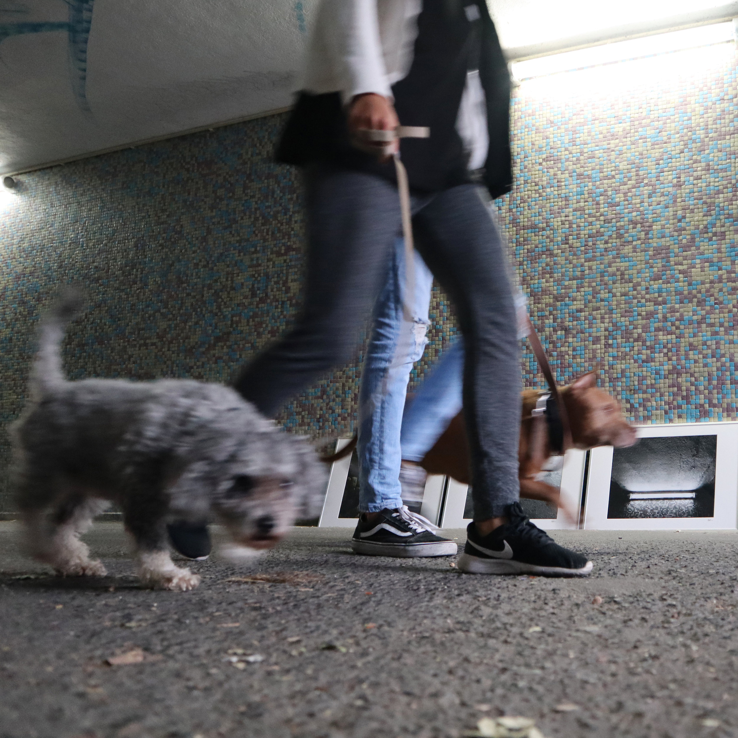 CARRASCO_art_gallery_ACR_walking_in_the_tunnel_of_DESOBJECTION_13.JPG