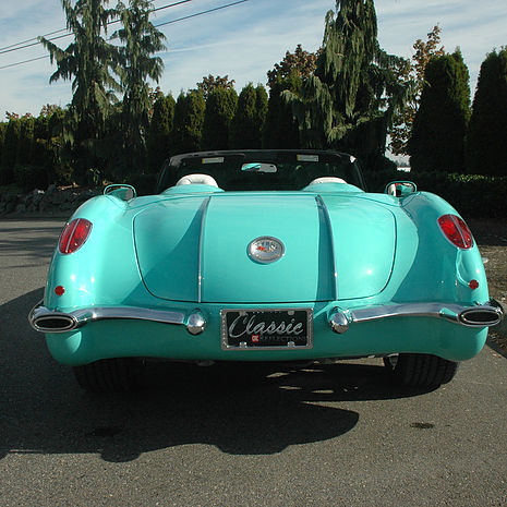 turquoise rear end.jpg