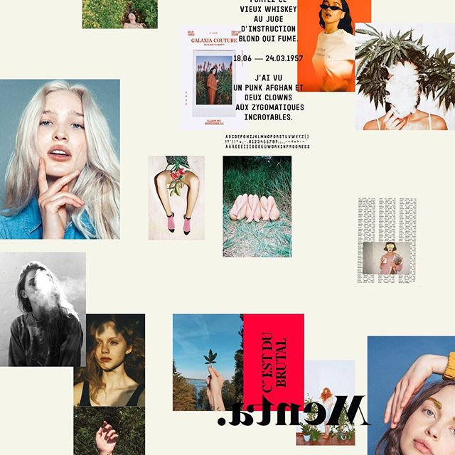 Might need to include @badgalriri on moodboards from here on out. #moodboardmonday ⠀⠀⠀⠀⠀⠀⠀⠀⠀ ⠀⠀⠀⠀⠀⠀⠀⠀⠀ #janemadeit #brandingxjanemade #design #branding #designer #whitespacesummer #photography #colorpalette #logo #designers #brandcuration #logodesigner #print #branding101 #smallbusiness #risingtidesociety #inspofinds #visualdiary #fwportfolio #bostoncreatives #graphics #femalefounded #typography #illustration #fashion #fashionphotography #womenofweed #weed
