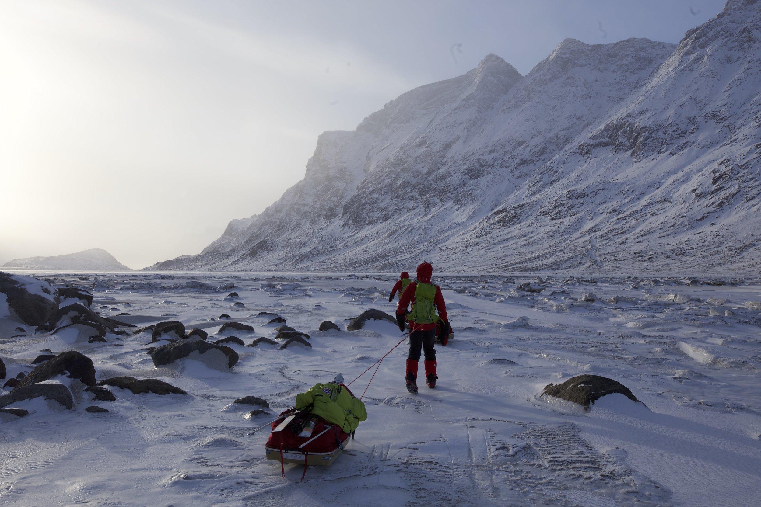 ArcticBaffin1.jpg