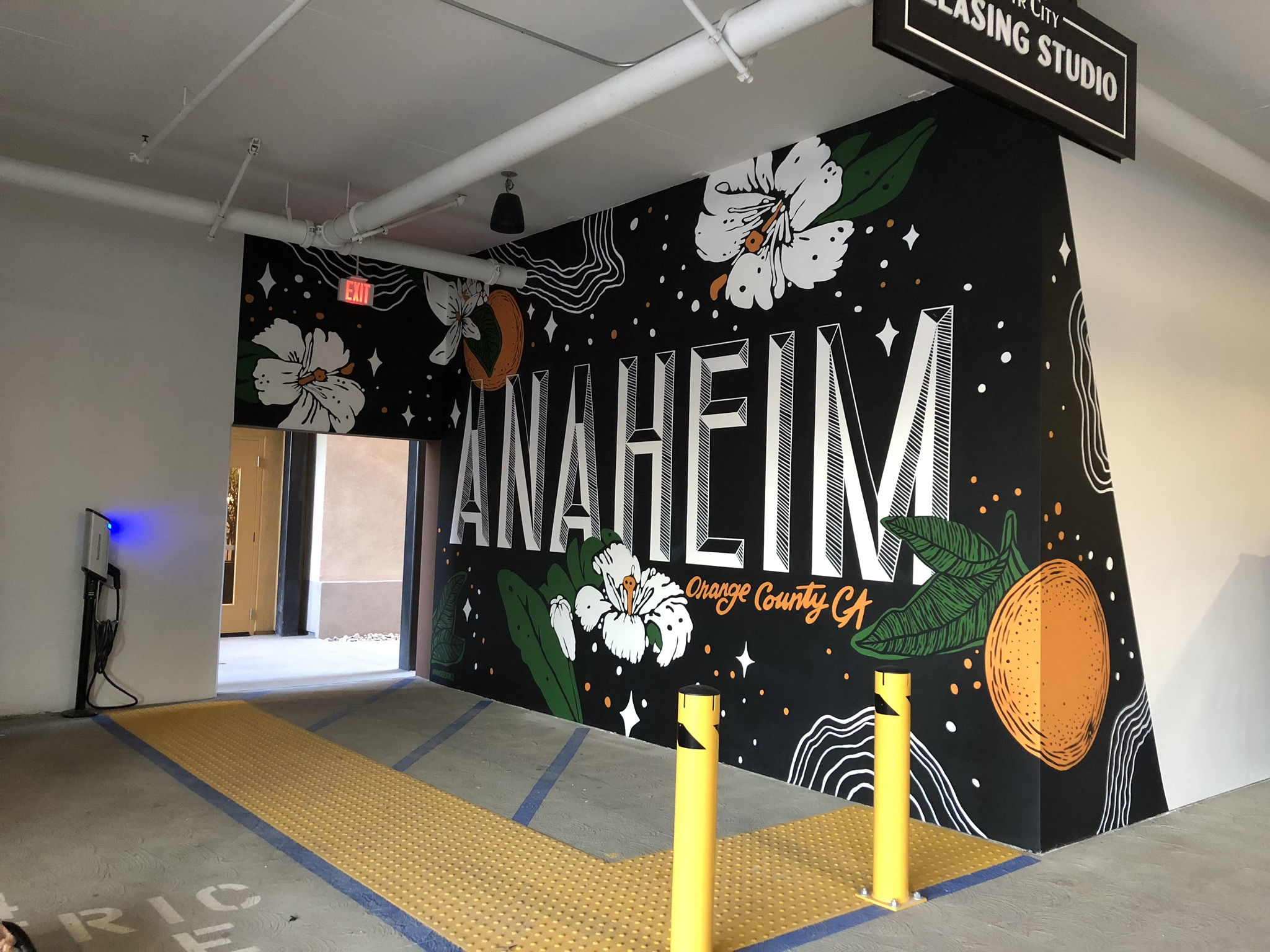 Anaheim CTR City Parking Gargage Murals and Custom Numbering Hand Painted