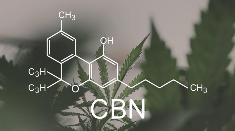 phytocannabinoids.jpg