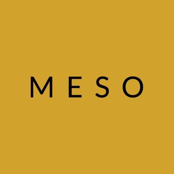 meso-logo.jpg