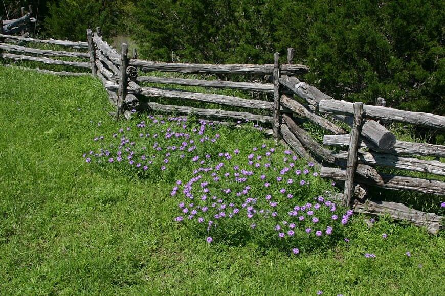 Old split-rail style fence.jpg