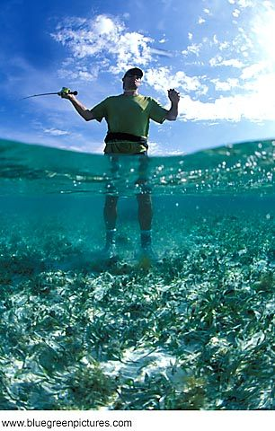 flyfishing.364174756_std.jpg