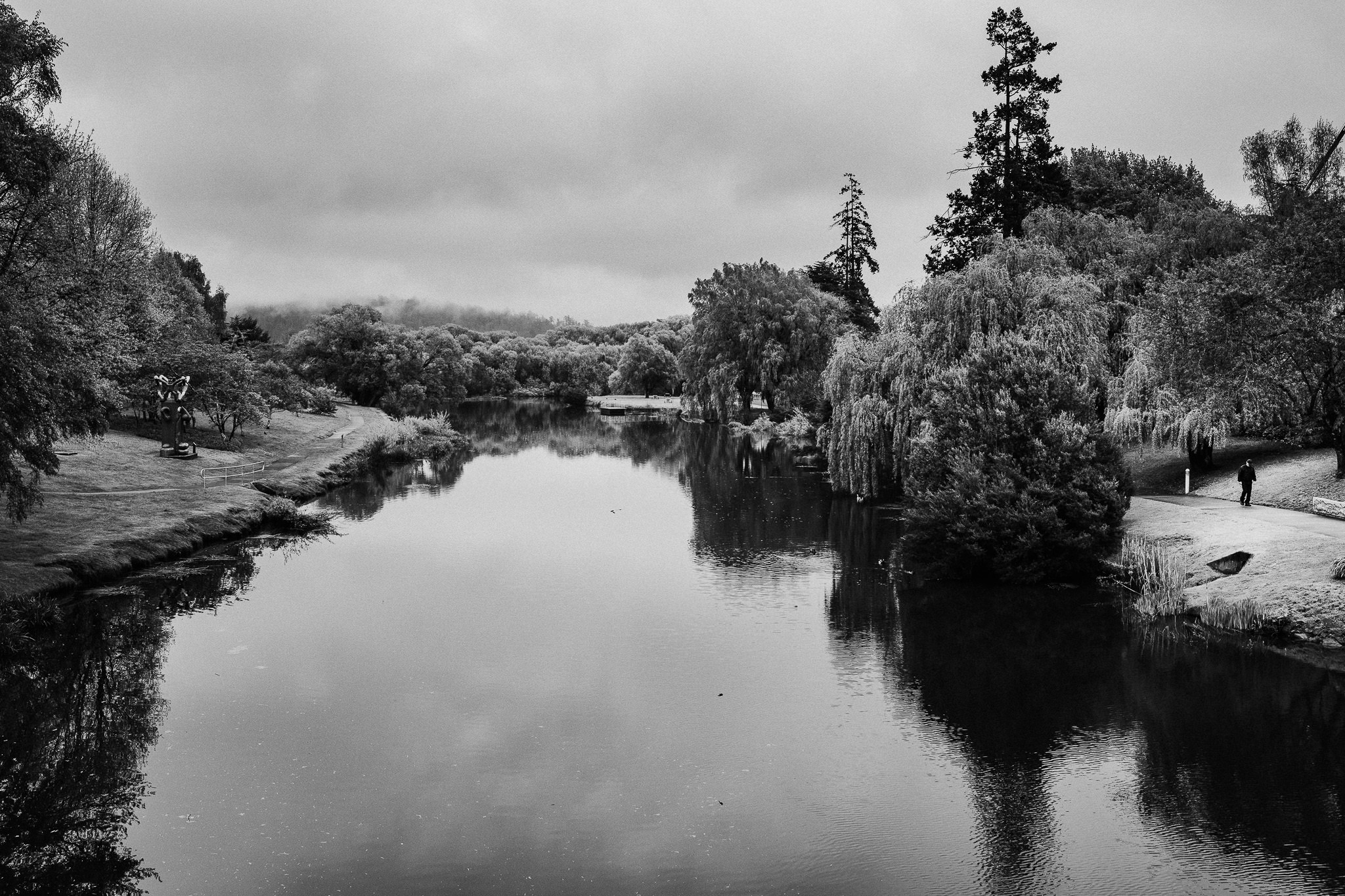 201/365 | The Meander River flows through farmland from the sacred western mountains, kooparoona niara, before carving its way through Deloraine. People walk it's banks each day, beneath the sequoias and blossoms, and if they're lucky sight the resident platypi.