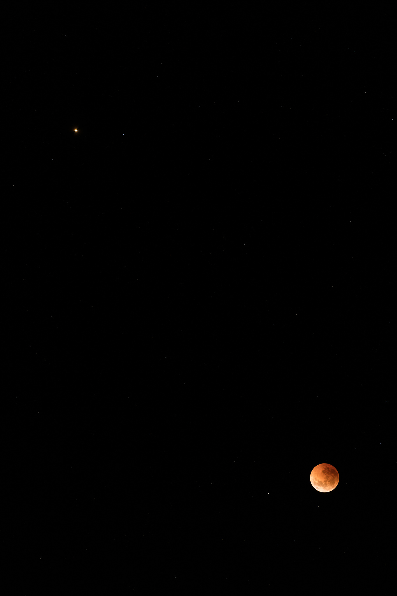 119/365 | Blood moon and mars in an early morning sky.