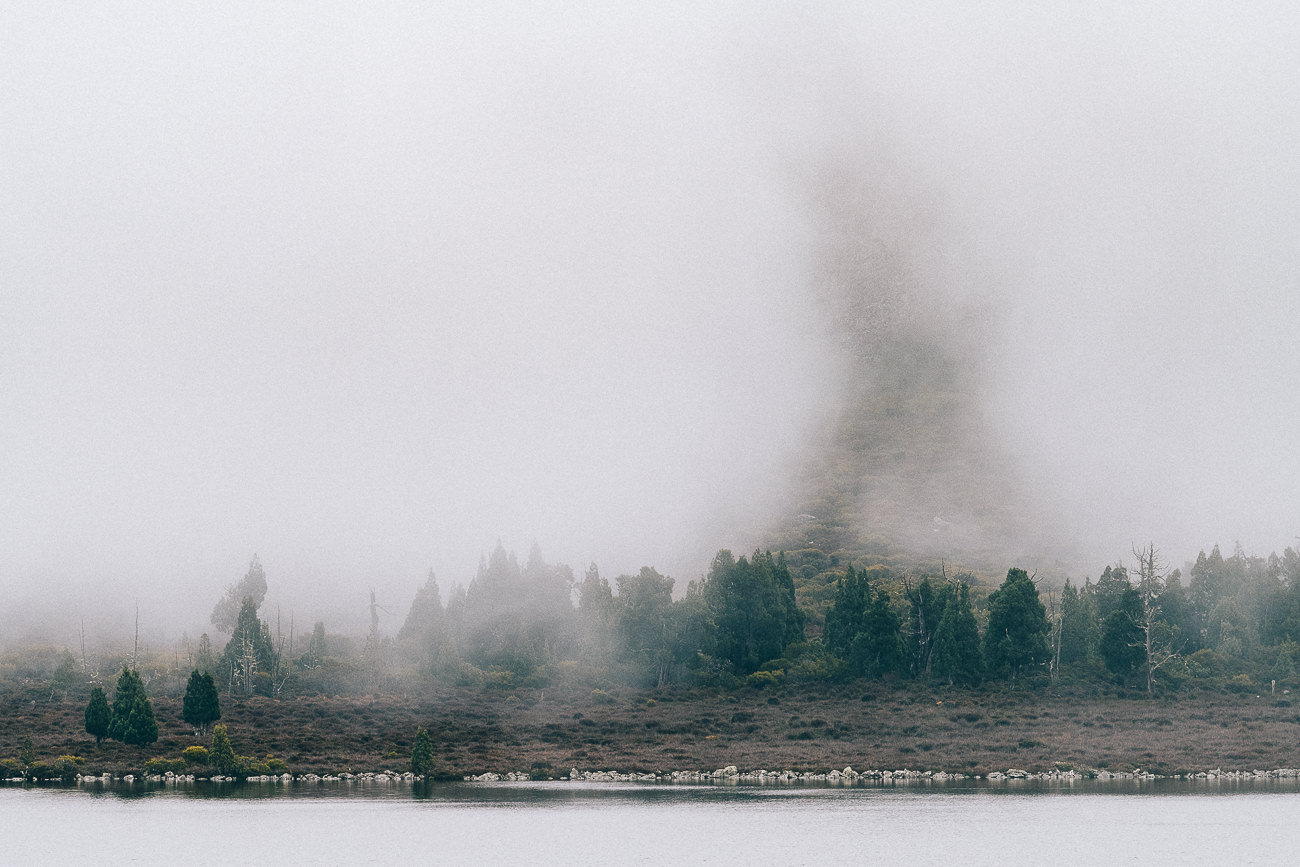 74/365 | Pine Lake in the mist