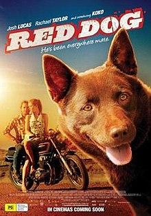 Set in the mining town of Dampier. The locals gather round and reminisce on how Red Dog, now dying, has affected each of their lives and brought the people of Dampier together.  Running time 89 minutes