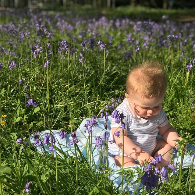 Blessings , bluebells, babe and Easter joy. 'Rejoice in the risen Lord' . . . #happyeaster #rejoiceintherisenlord #begratefuleveryday #joyineveryday #preciousmoments  #preciousfamily #easterblessings