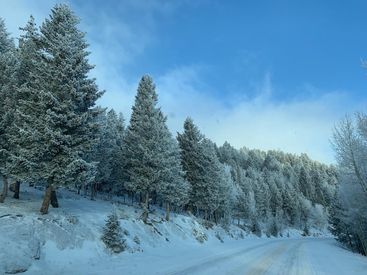 Colorado Blue Skies & White Snow