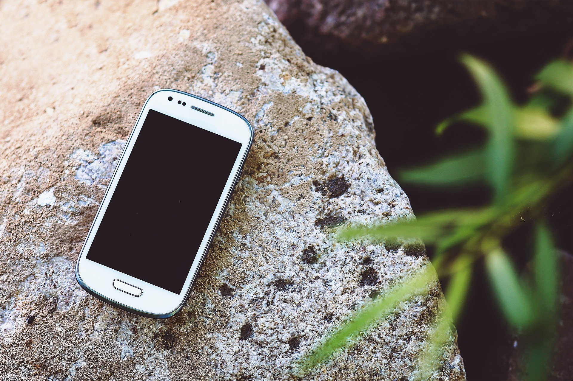 smartphone-791179_1920.jpg