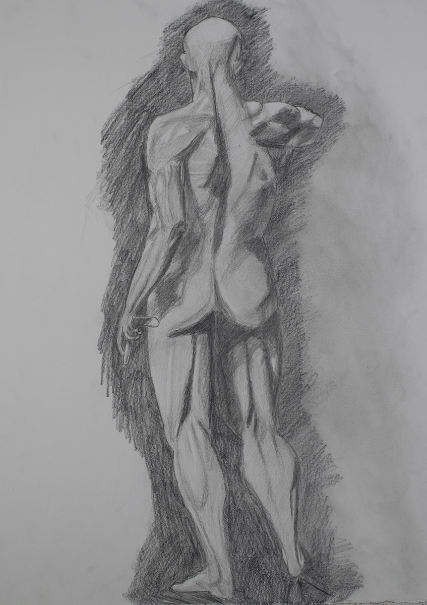 Anatomy Drawing, Muscles