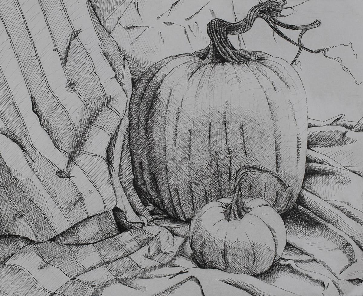 Foundation Drawing, Pumpkin Still Life
