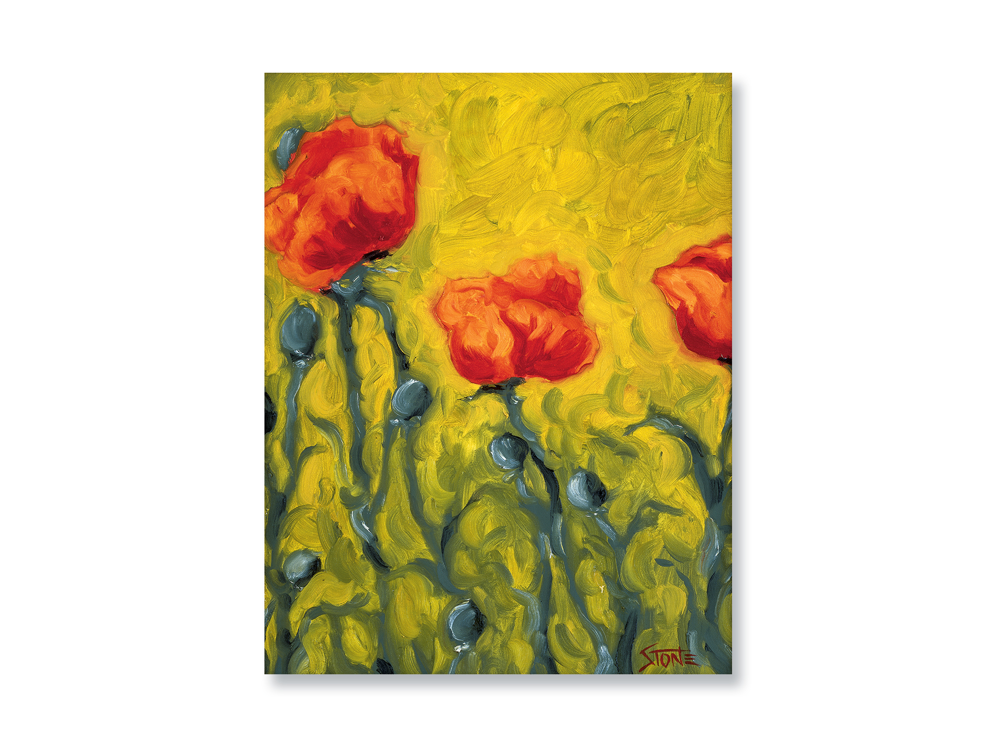 TWO POINT FIVE POPPIES