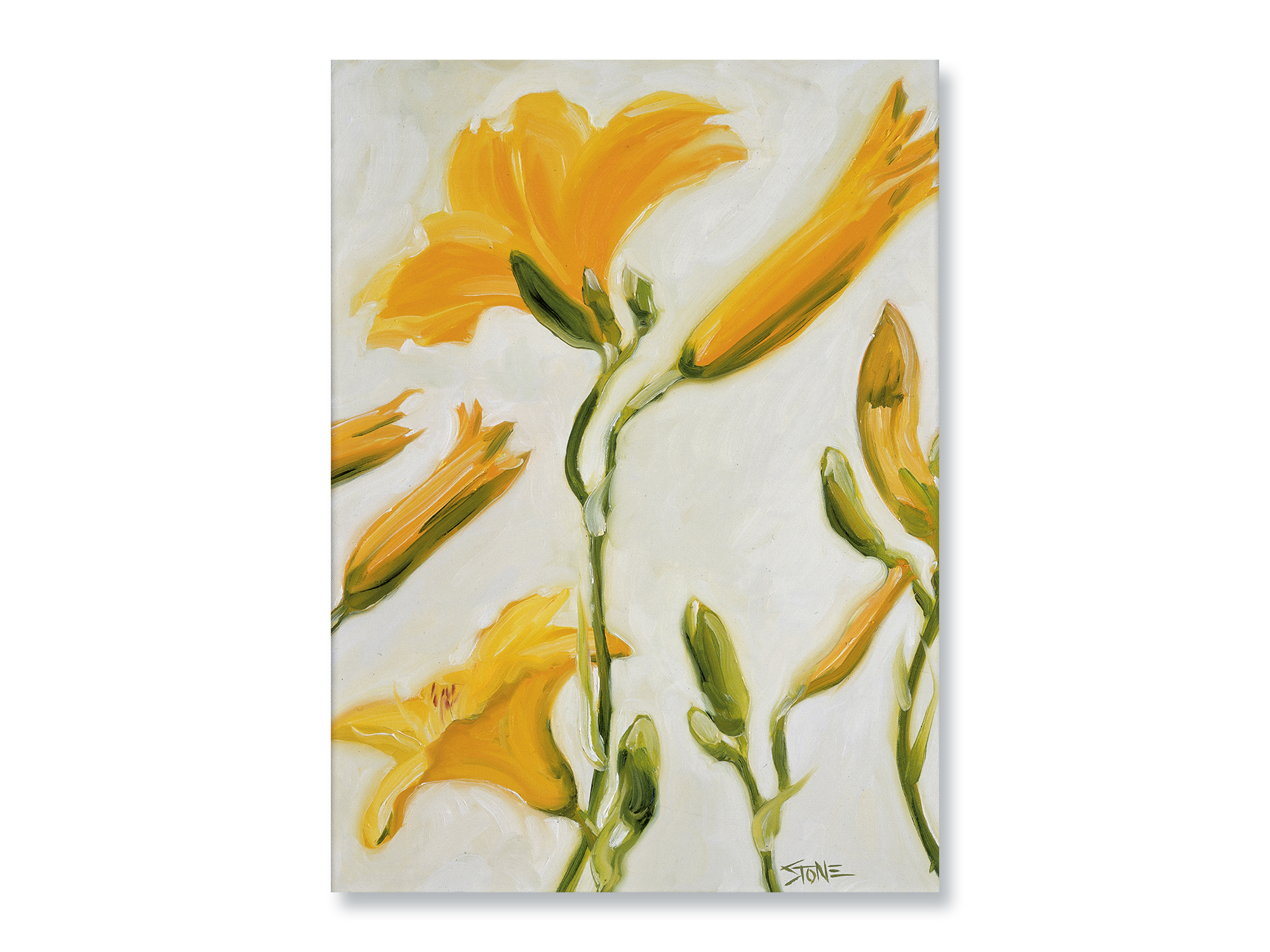 YELLOW LILIES ON WHITE