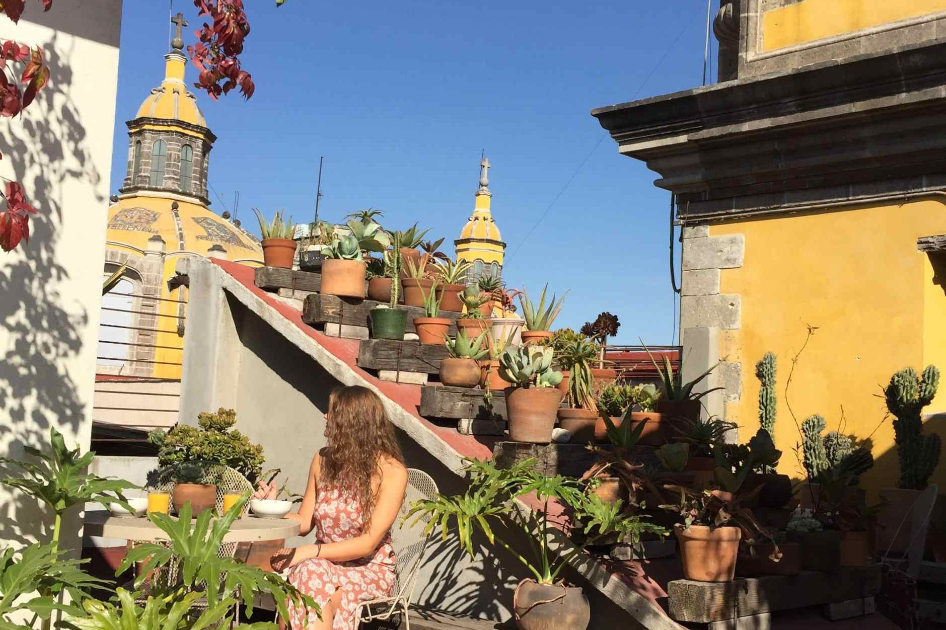 Chaya BNB Boutique - Centrally Located | Mexico City, Mexico