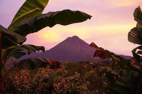 Leaves and Lizards - Eco Adventure Retreat | Costa Rica