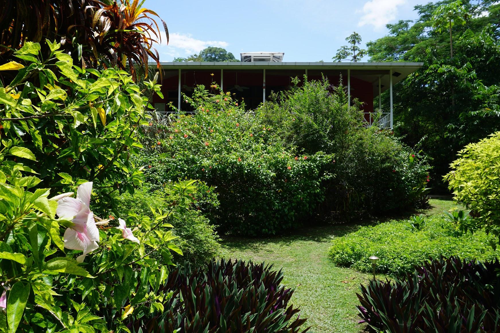 Turtle Beach House - Beachfront B&B| Bocas del Toro, Panama