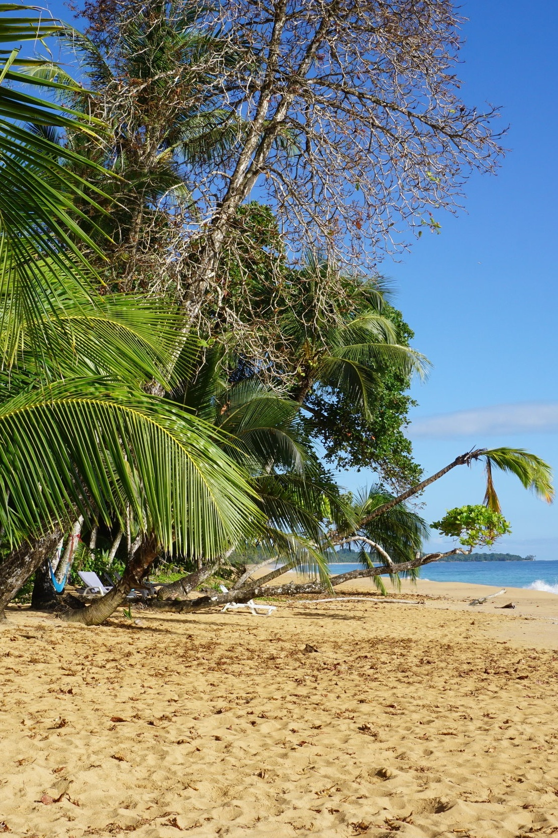 Turtle Beach House | Bocas del Toro, Panama -