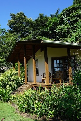 Tranquilo Bay Adventure Lodge | Panama -