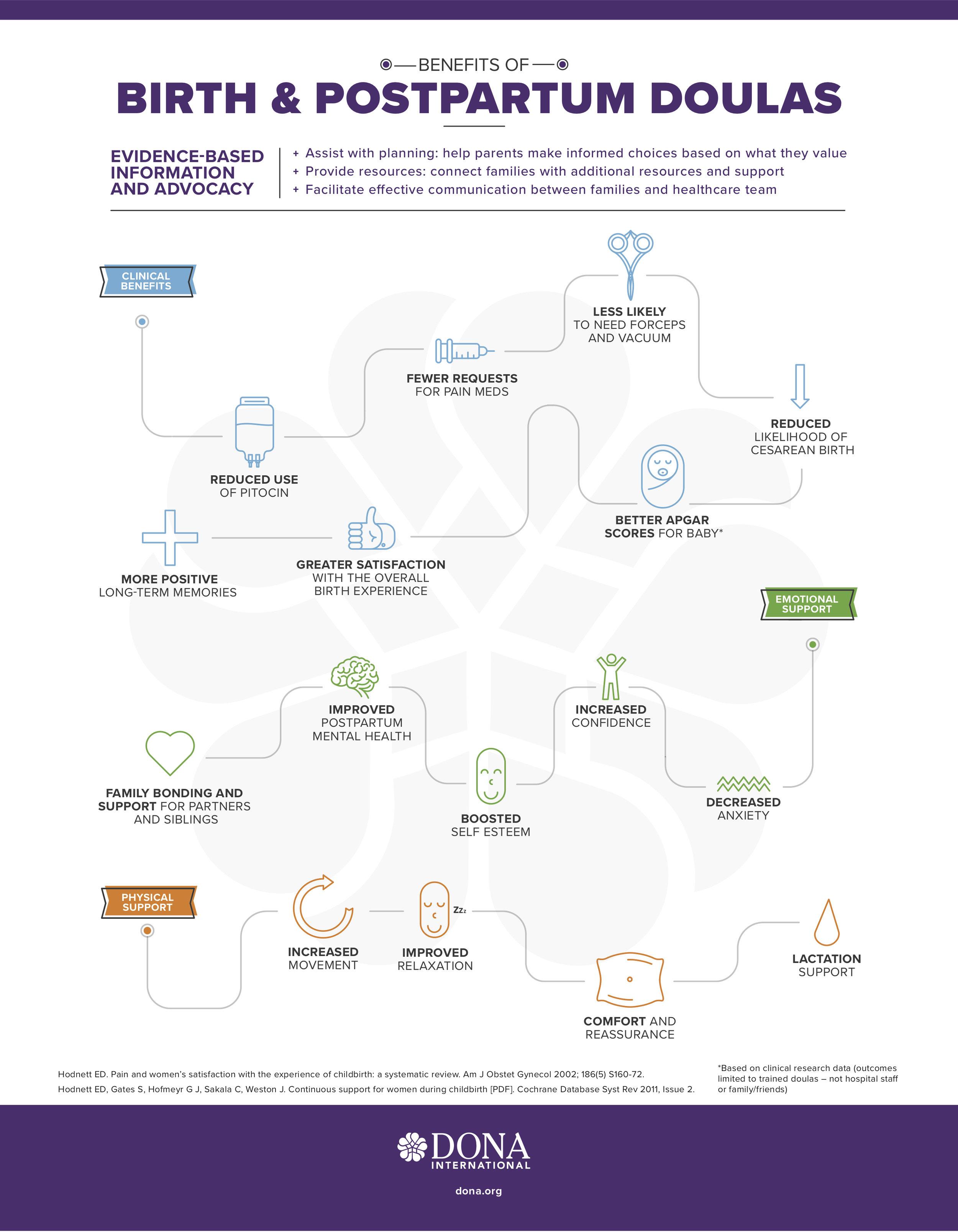 DONA_infographic-3.jpg