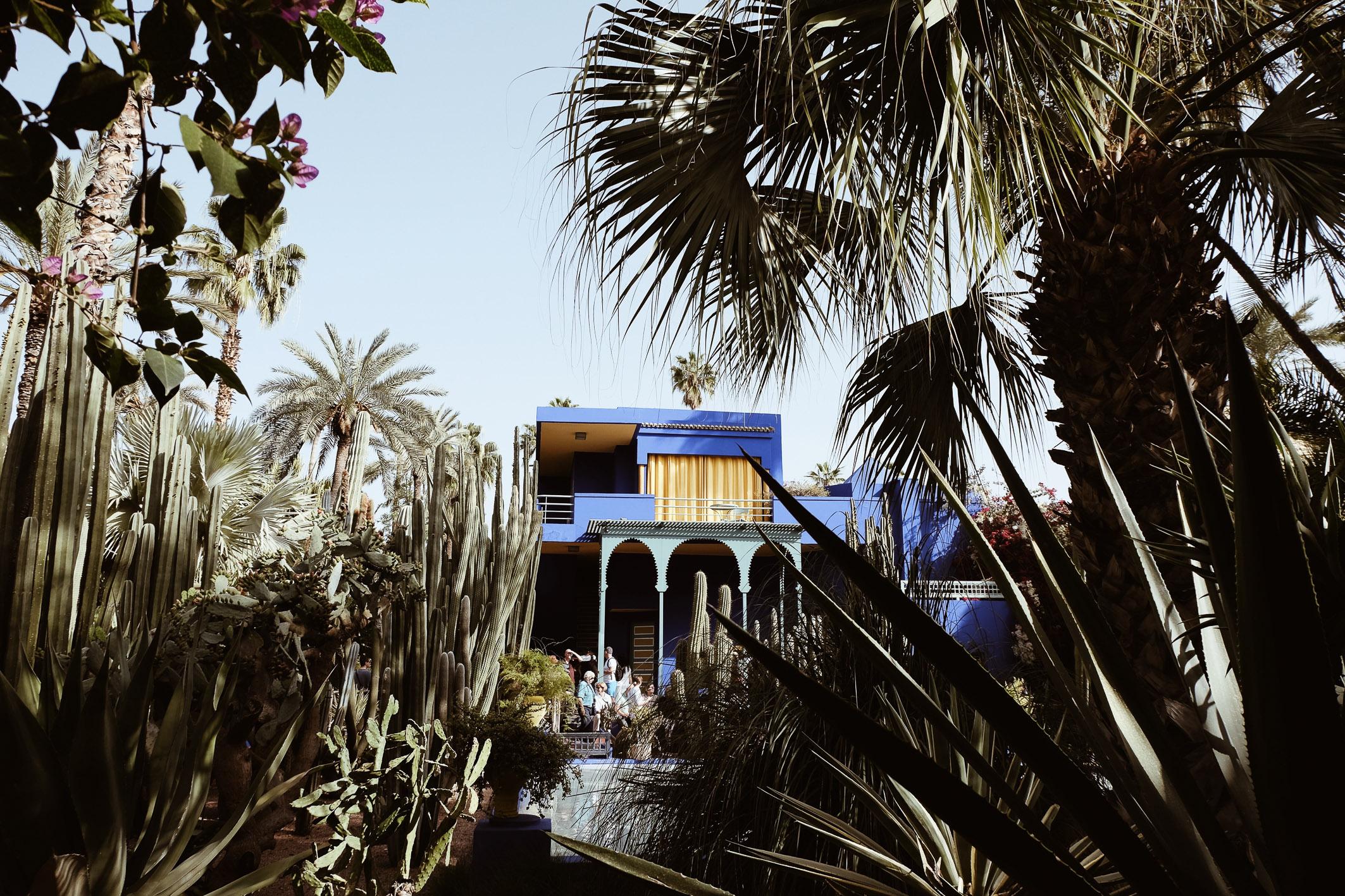 Carnet Sauvage - Blog voyage Marrakech, le Jardin Majorelle