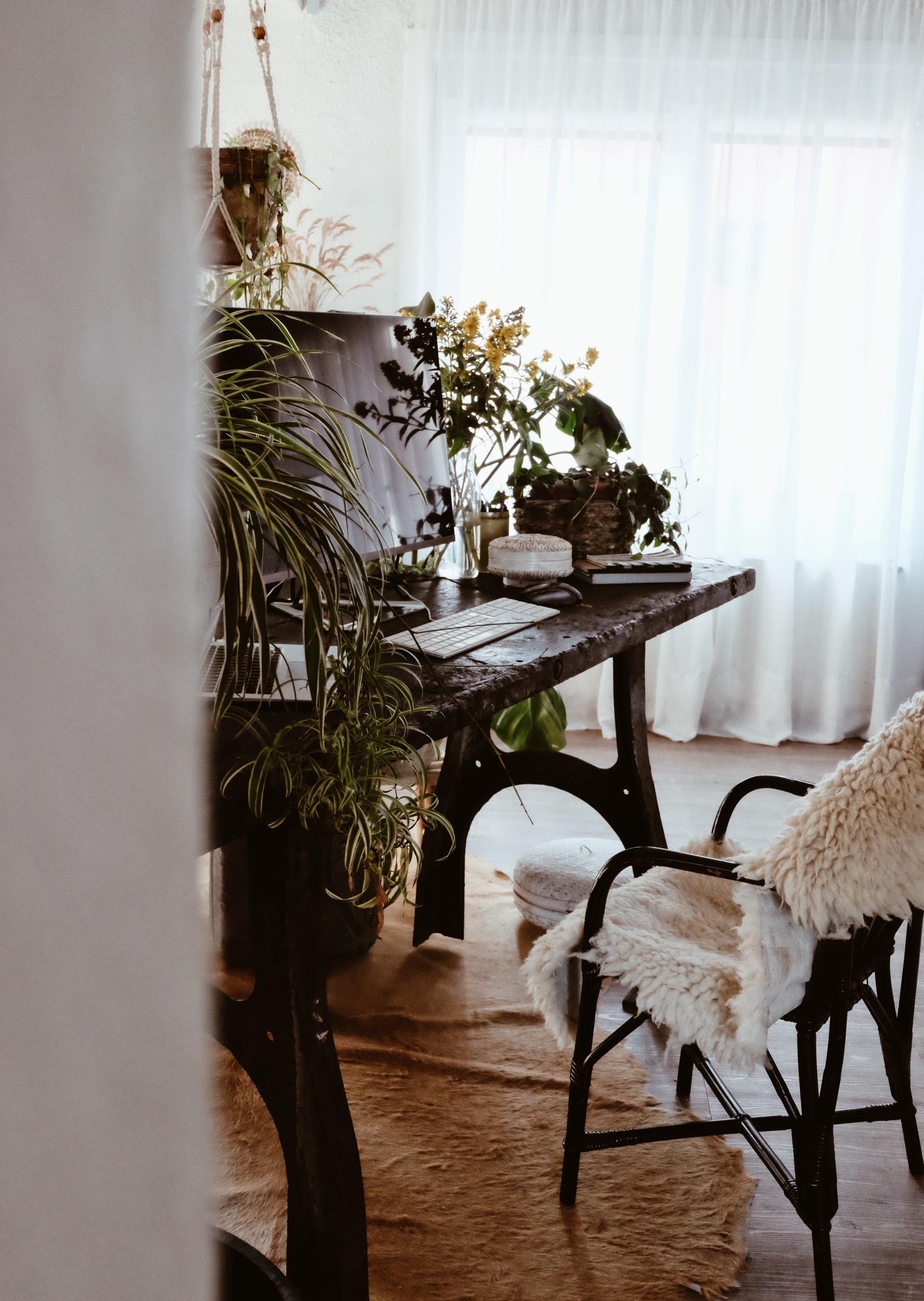 carnet+sauvage+-+blog+decoration+-+home+tour+-+bohemian+home