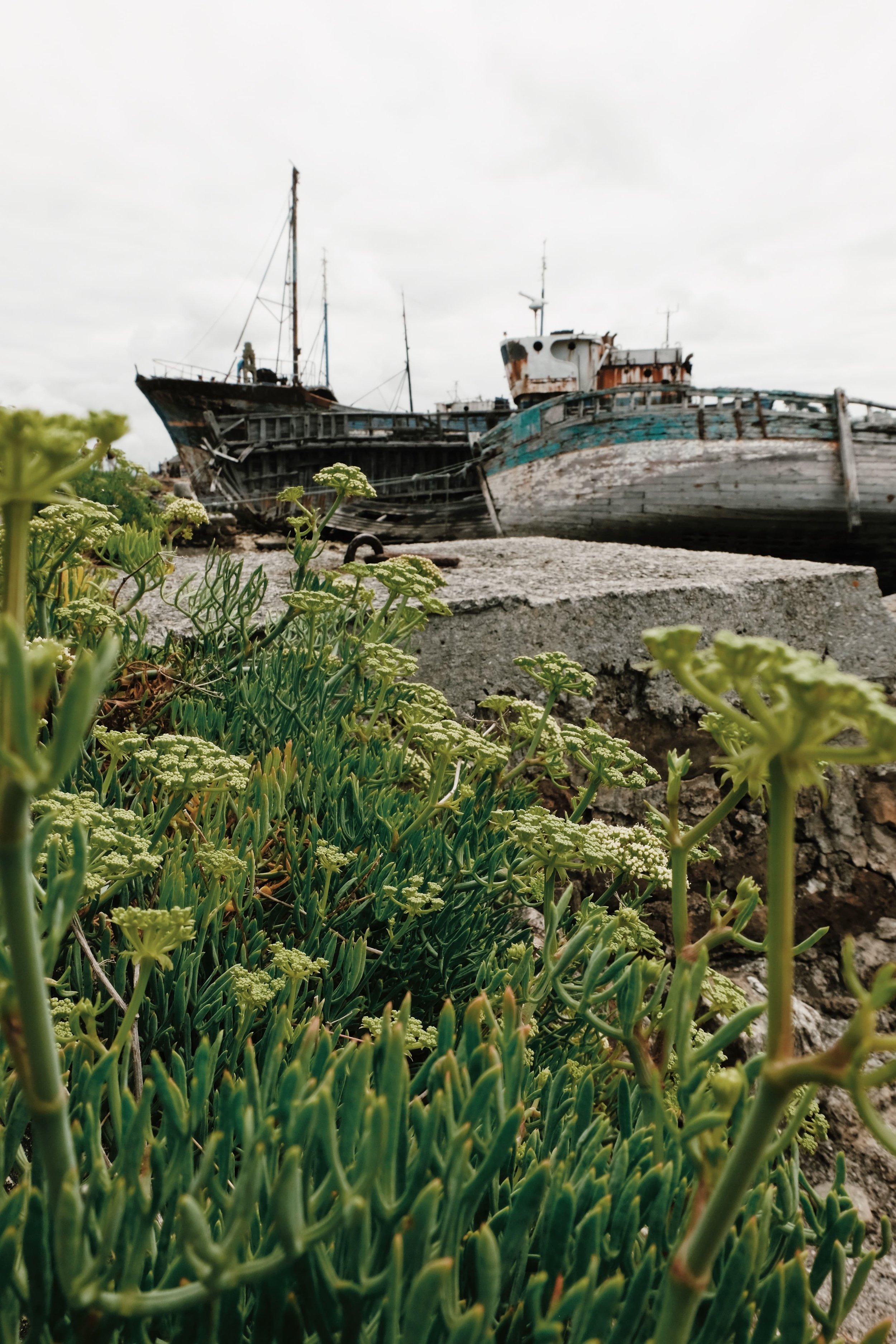 Carnet Sauvage - blog voyage Lille - visiter la Bretagne - presqu'ile de Crozon - Camaret sur mer 5.jpg