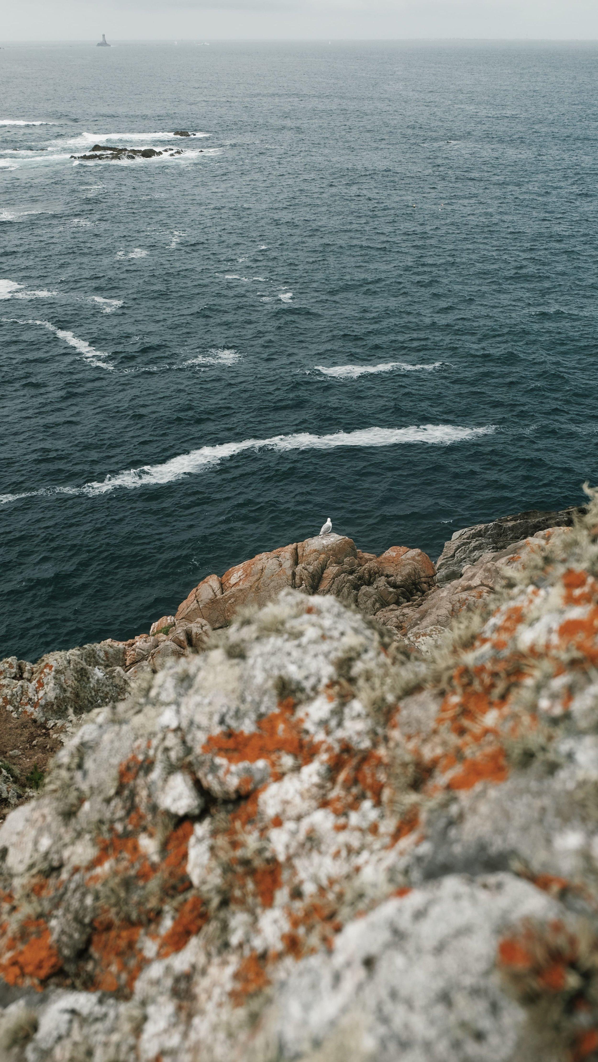Carnet Sauvage - blog voyages lille - partir en bretagne - visite la pointe du van22.JPG