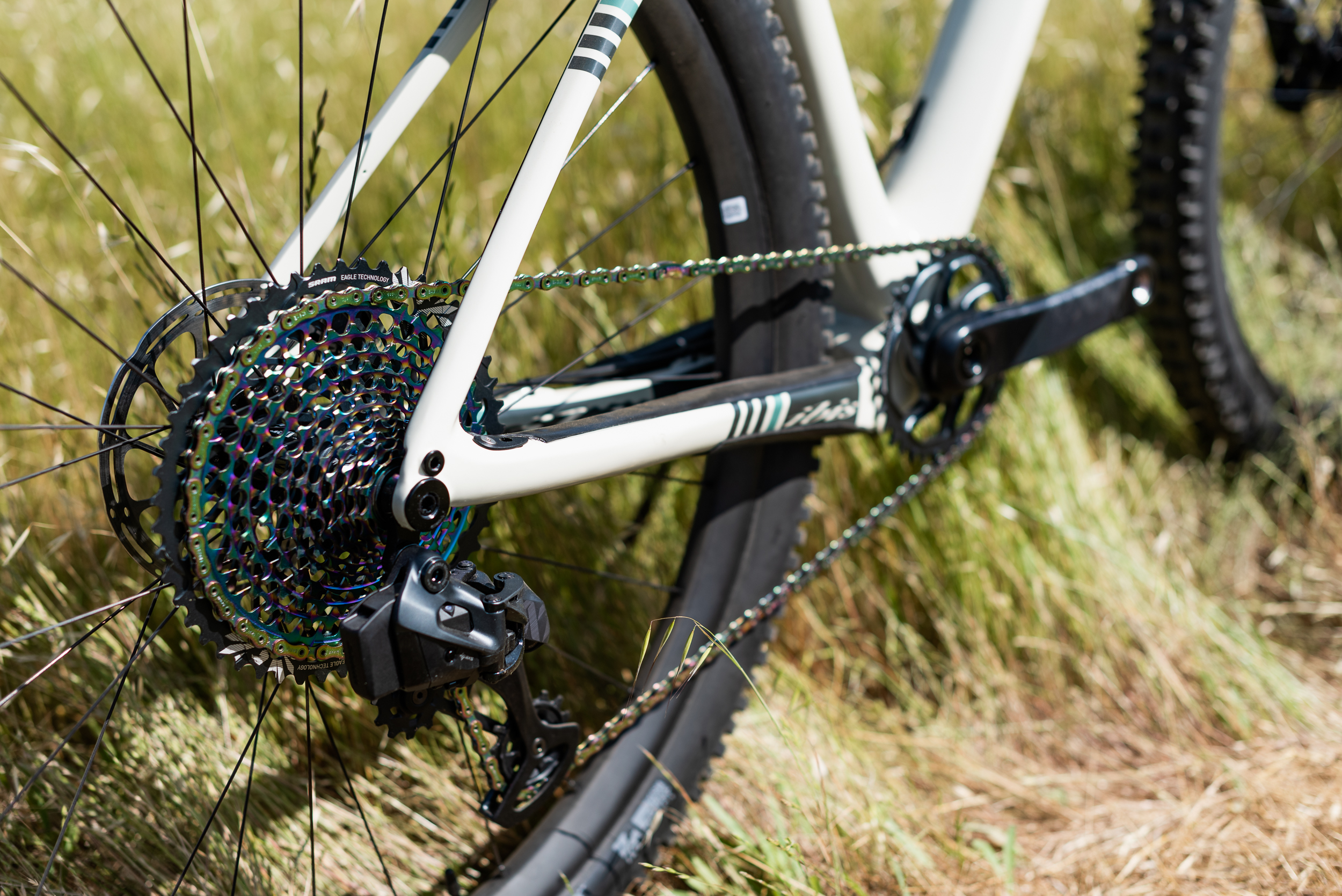 Trail.Head.Cyclery.2019-8922.jpg