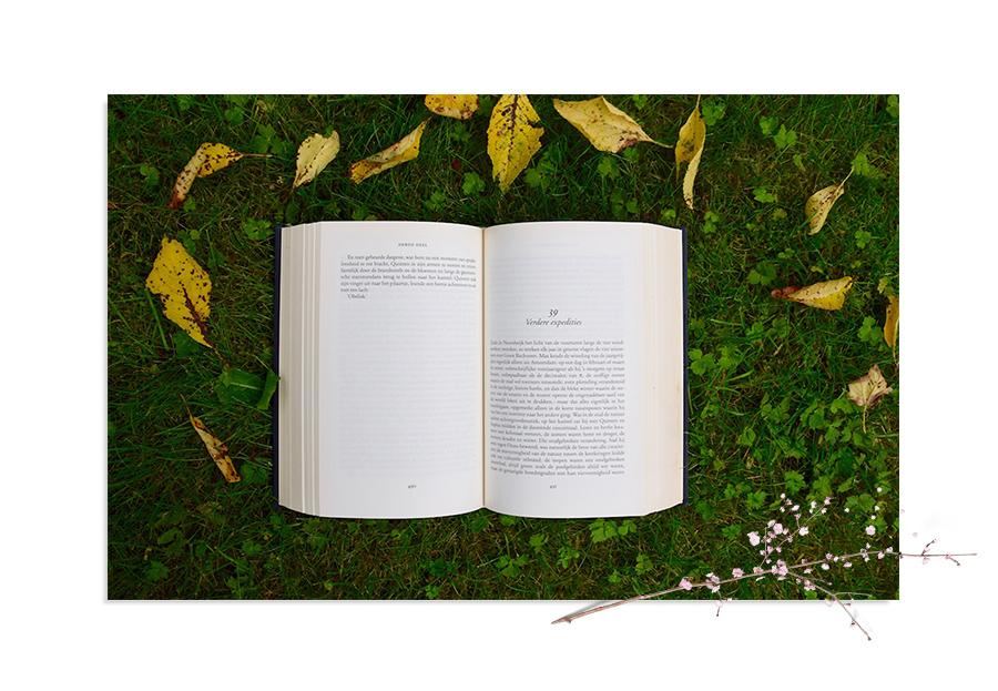 Utebibliotek & høytlesning - Hamar bibliotek lanserer byens første utebibliotek på Oddenfest! Få tips om god sommerlektyre, og legg deg på plenen for å lese – gjerne med noe godt i glasset. Naturligvis kan du også låne med deg bøker hjem! I tillegg blir det høytlesning for barn.