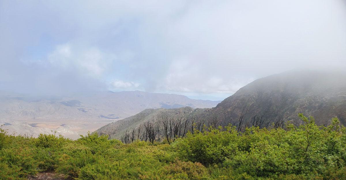PCT-Mountain-View.jpg