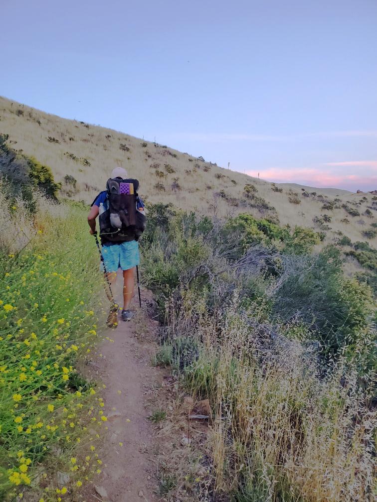PCT-21-Hiking.jpg