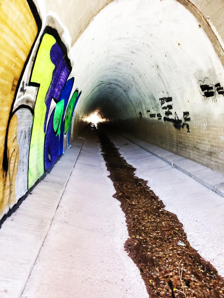 PCT-21-Tunnel.jpg