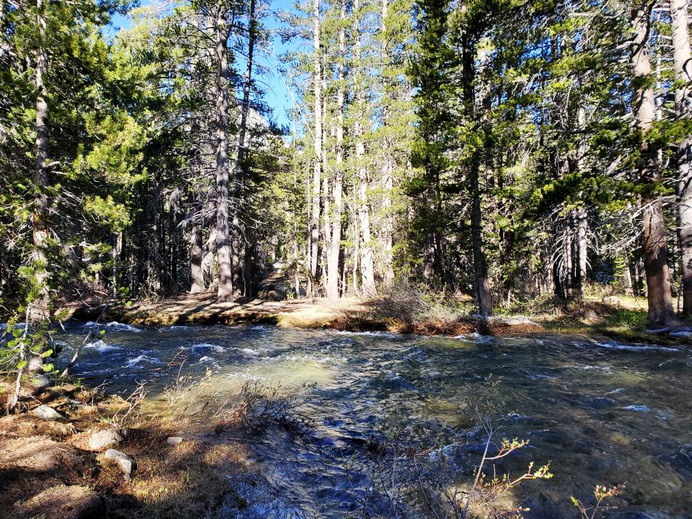 PCT-Day-41-Flowing-Creek.jpg
