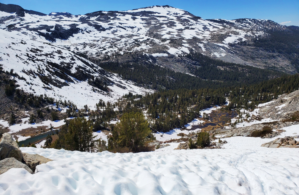 PCT-Day-45-Moutain-Trail.jpg