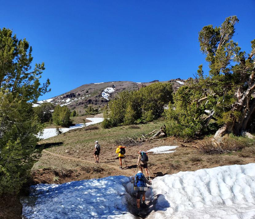 PCT-Day-49-Snow-Hills.jpg