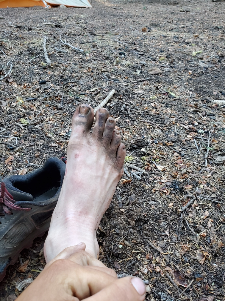 PCT-Day-58-Disgusting-Feet.JPG