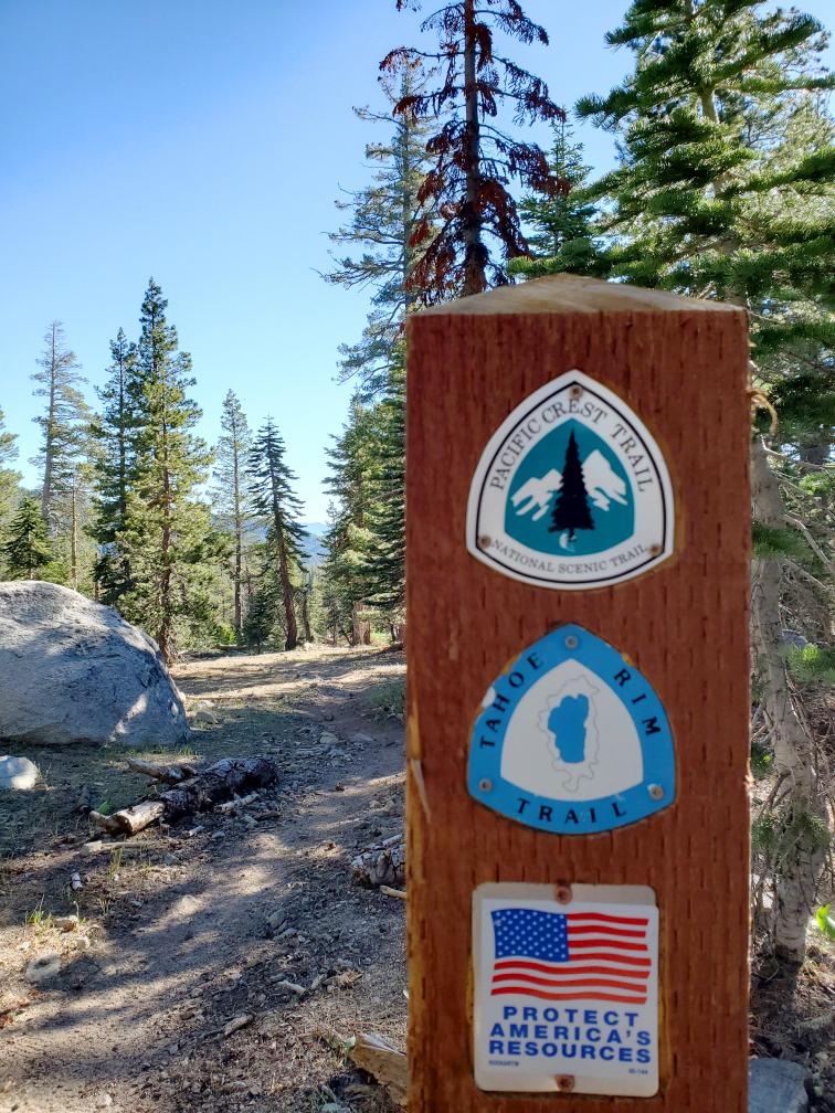 PCT-Day-54-Trail-Marker.jpg