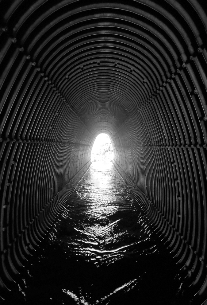 PCT-Day-54-Tunnel.jpg