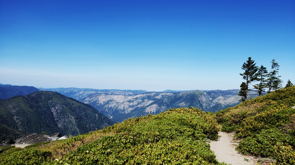 PCT-Day-59-Mountains-on-Trail.jpg